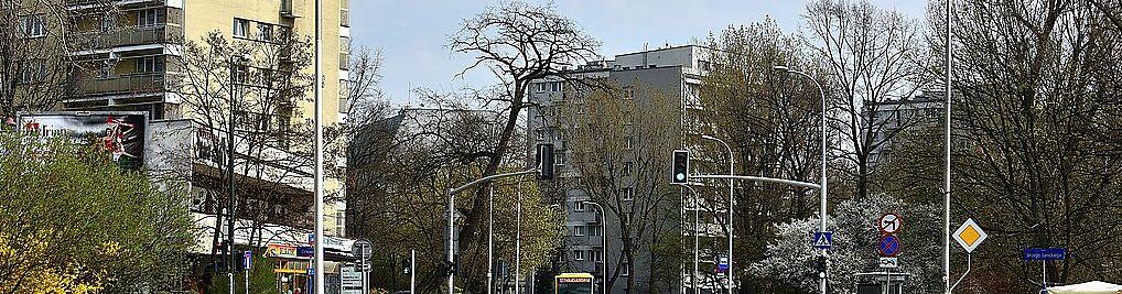 Zdjęcie w galerii Ludna Warszawa nr 1