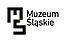 Logo - Śląskie, ul. T. Dobrowolskiego 1, Katowice 40-005 - Muzeum, godziny otwarcia, numer telefonu