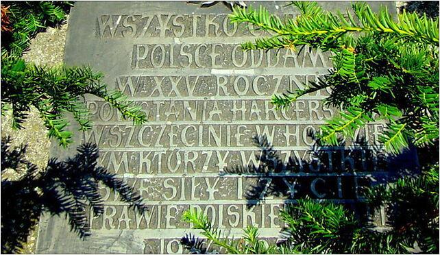 0907 Tab XXV Harcerstwa Polskiego Pl Żołnierza Polskiego Szczecin SZN 70-551 - Zdjęcia