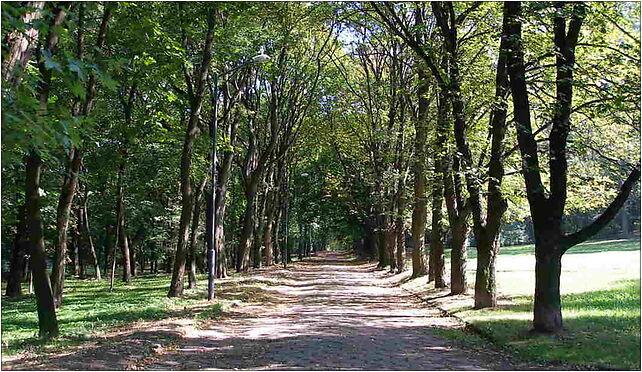 Bytom - Park, Wrocławska, Bytom 41-902 - Zdjęcia