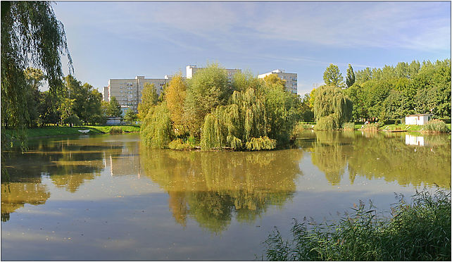 Bytom - Pond in park 01, Olimpijska, Bytom 41-902 - Zdjęcia