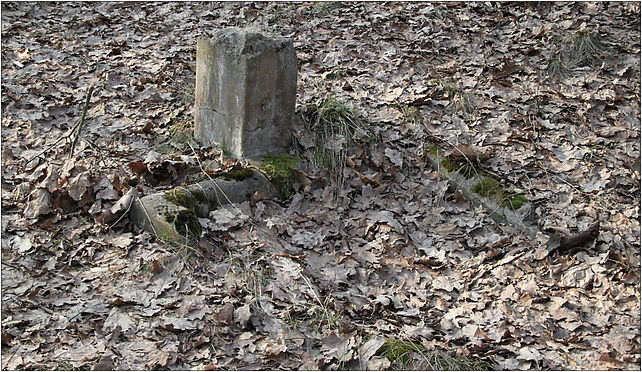 Evangelical-Augsburg Cemetery Marki 4, Kurpińskiego Karola, Marki 05-270 - Zdjęcia