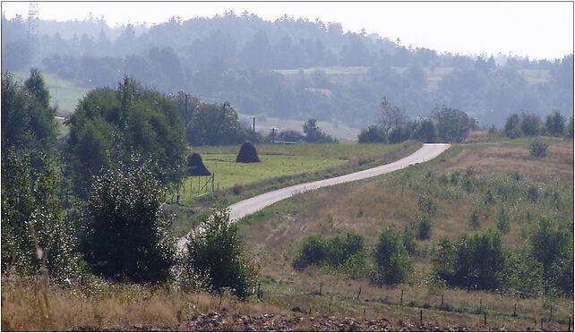Huta Brzuska - nowa droga z Łazów, Zimny Potok, Zimny Potok 37-740 - Zdjęcia