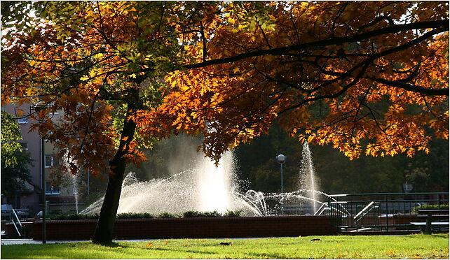 Park Kultury i Wypoczynku IMG 0161, 21210, Słupsk od 76-200 do 76-280 - Zdjęcia