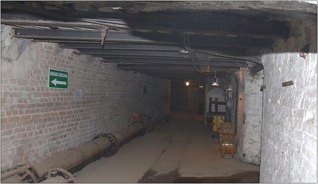 Subterranean Skansen Guido Zabrze 05, 3 Maja921, Zabrze 41-800 - Zdjęcia