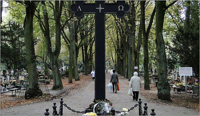 Szczecin Cmentarz Centralny Krzyz Zelazny , Mieszka I, Szczecin od 71-046 do 71-080 - Zdjęcia