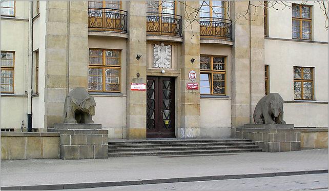 Torun Lasy Panstwowe niedzwiedzie, Moniuszki Stanisława 12, Toruń 87-100 - Zdjęcia