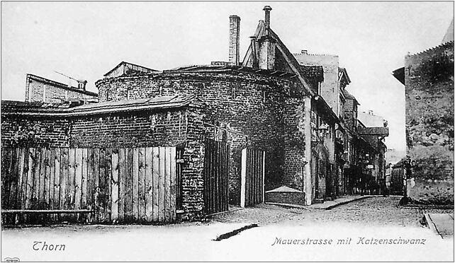Torun baszta Koci Leb2, Podmurna 74, Toruń 87-100 - Zdjęcia