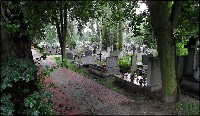 Warszawa-Wlochy, cmentarz przy Ryzowej, Dojazdowa, Warszawa 02-484 - Zdjęcia