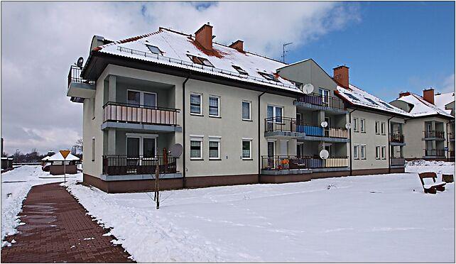 Zabrze Hauptmana 13-15 15 03 2010 P3158324, Zabrze 41-806 - Zdjęcia