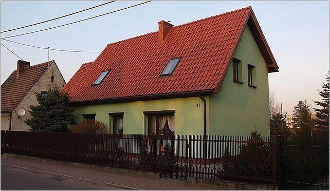 Zabrze Poznańska 21 24 03 2010 P3248530, Poznańska 21, Zabrze 41-800 - Zdjęcia
